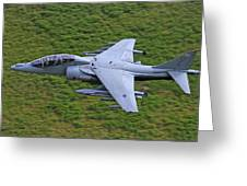 Harrier Low Level Greeting Card