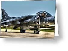 Harrier Greeting Card