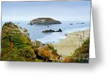 Harris Beach Greeting Card