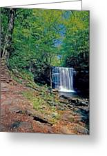 Harrison Wright Falls - Summertime Greeting Card