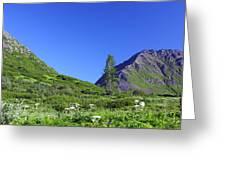Hatcher Pass Alaska Greeting Card