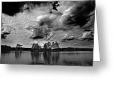 Haukkajarvi Bw Greeting Card