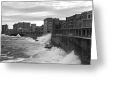 Havana Greeting Card