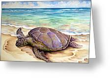 Hawaiian Green Turtle Greeting Card