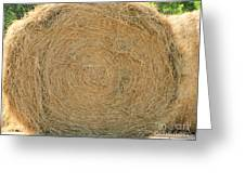 Hay Ball Greeting Card