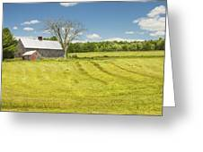 Hay Being Harvested Near Barn In Maine Greeting Card