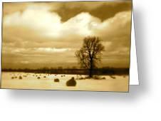 Hay Field Greeting Card