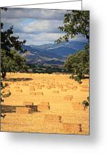 Hay Field With Mountain Background Greeting Card
