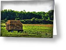 Hay Ride Greeting Card