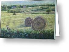 Haybales Durham County Greeting Card by Ruth Greenlaw