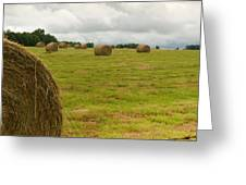 Haybales In Field On Stormy Day Greeting Card by Douglas Barnett