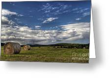 Haymaking Time Greeting Card
