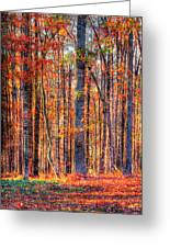 Hdr- Autumn Leaves Greeting Card