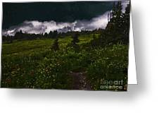 Heading Home Through The Meadow Greeting Card
