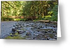 Hear The Rush Of Water II Greeting Card