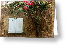 Heart Shutters And Red Roses Greeting Card