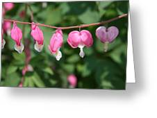 Hearts In A Row Greeting Card