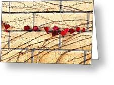 Hearts On The Wall Greeting Card