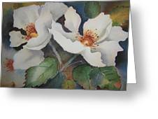 Hedge Roses Greeting Card
