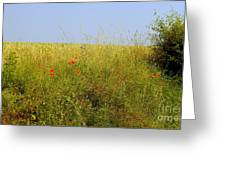 Hedgerow Flowers Greeting Card
