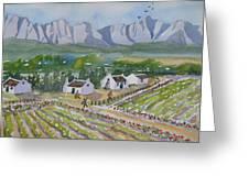 Helderberg Wine Estate Greeting Card