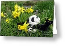 Hello Spring. Ginny From Travelling Pandas Series. Greeting Card