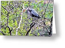 Heron Alone Greeting Card