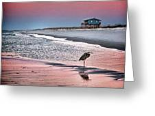 Heron And Beach House Greeting Card