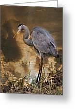 Heron Bronze Greeting Card