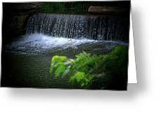 Heron Dam Greeting Card