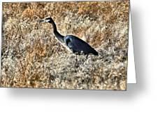 Heron On The Hunt Greeting Card