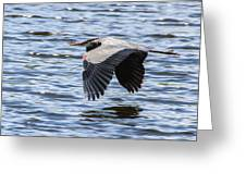 Heron Over Water Greeting Card
