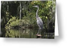 Heron Overlord Greeting Card