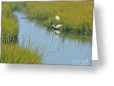 Heron Reflections Greeting Card