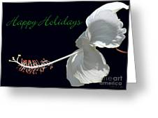 Hibiscus Holiday Card Greeting Card