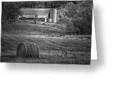 Hidden Away In Black And White Greeting Card