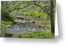 Hidden Creek Greeting Card