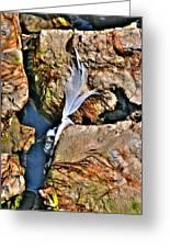 Hidden Images Vert Greeting Card