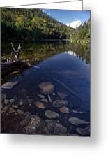 Hidden Pond Greeting Card