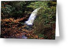 High Angle View Of A Waterfall, Glenoe Greeting Card