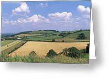 High Angle View Of Patchwork Fields Greeting Card