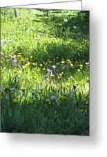 High Meadow Flowers Greeting Card