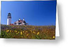 Highland Lighthouse Cape Cod Greeting Card by Skip Willits
