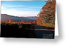Hills In Full Bloom Greeting Card