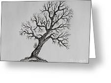 Hilltop Crooked Tree Greeting Card