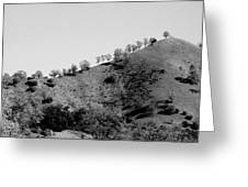 Hilltop In A Row - Black And White Greeting Card