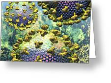 Hiv Three Virions On Blue Greeting Card