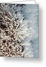 Hoar Frost Crystals On A Rock Greeting Card