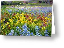 Hoeing Team And Iris Fields Greeting Card