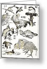 Hokusai: Birds Greeting Card